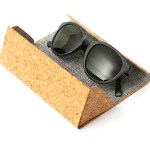 Waterhaul Crantock Sunglasses in case