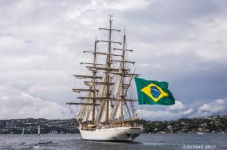 Brazillian Full Rigger, Cisne Branco