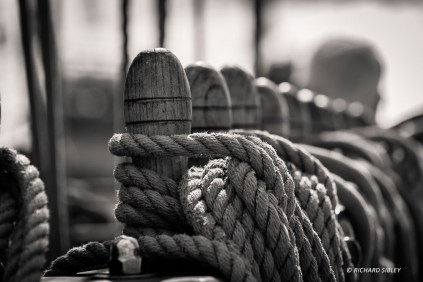 Tall Ships Regatta 2014 - Royal Greenwich