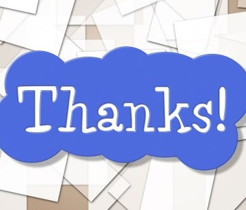 thank you page ideas seafoam media blog