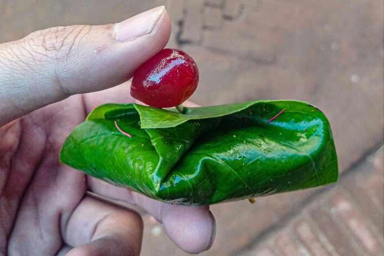 Meetha Paan 尼泊爾甜檳榔