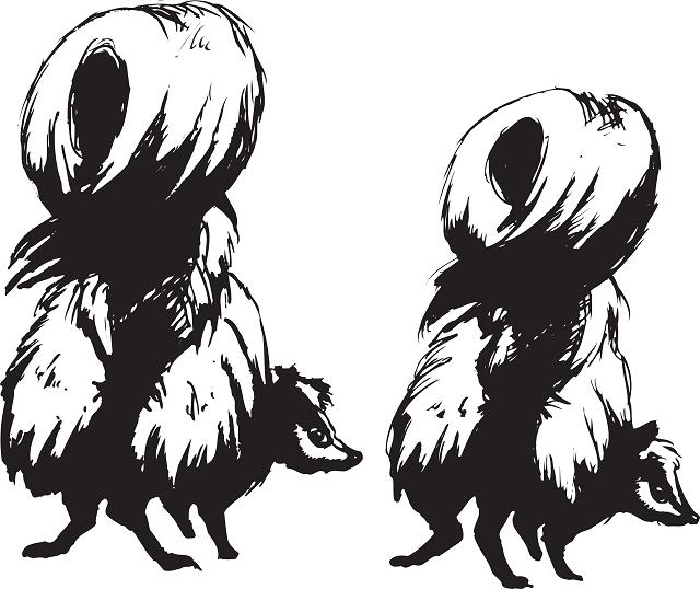 skunks-46164