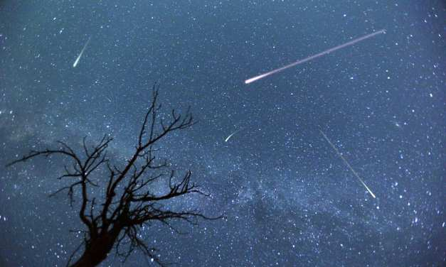 Observing the Perseid Meteor Shower