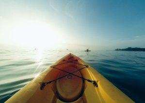 Charleston Kayaking View from Kayak