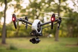 Alaska Drones -Prince of Wales
