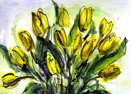 tulips-vi