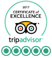 Sealife Adventures Trip Advisor Certificate of Excellence five star