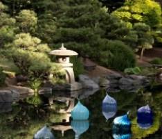 Japanese Pond at Denver Botanic Gardens