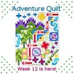 Adventure Quilt- Week 12 is here!