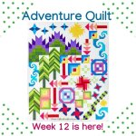 Adventure Quilt- Week 12 is here!