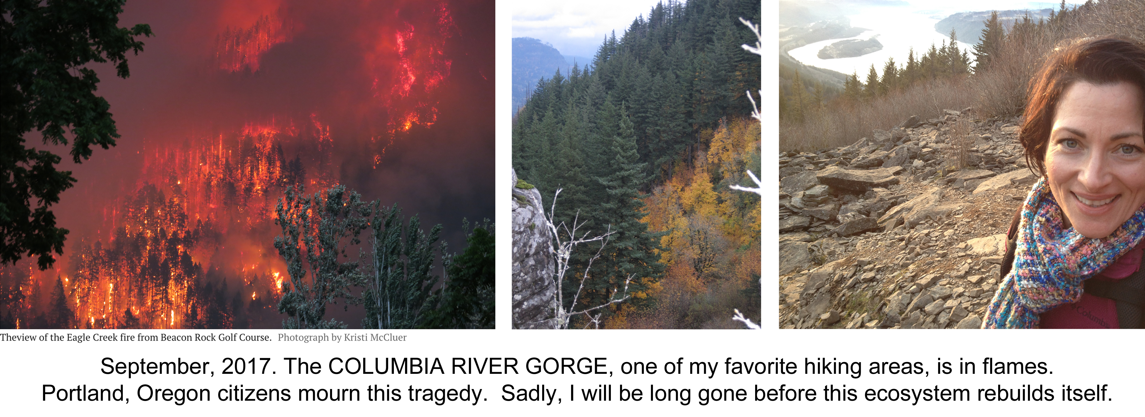 Personal post: ash from nearby forest fires falls in Portland, OR USA,