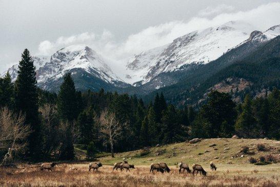 Estes Park Colorado Rocky Mountains-6