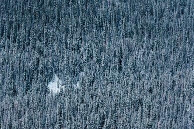 Winter Park Colorado Mountains-8