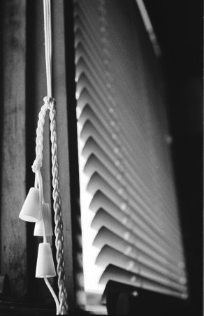 the-blinds