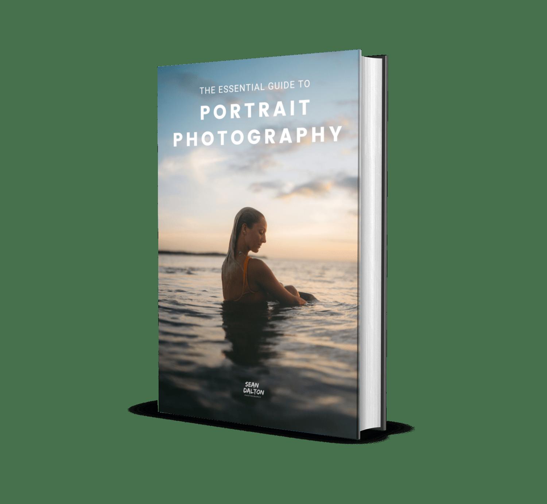 Free Portrait Guide