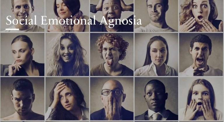 Social Emotional Agnosia