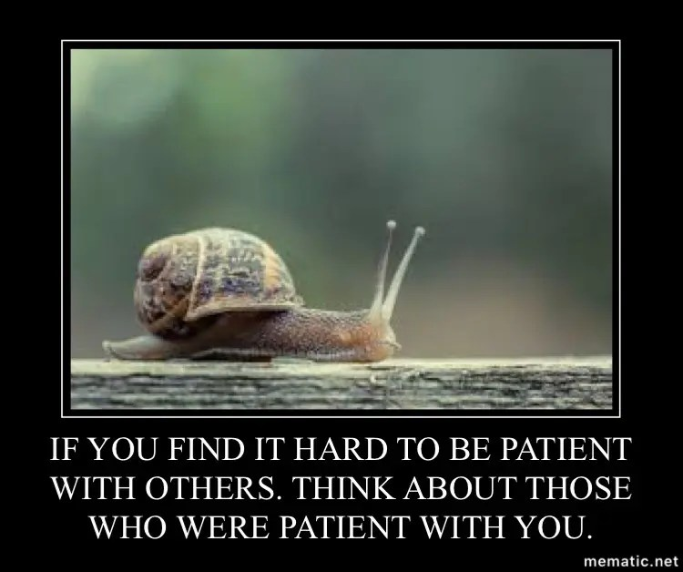 Patience walks with progress.