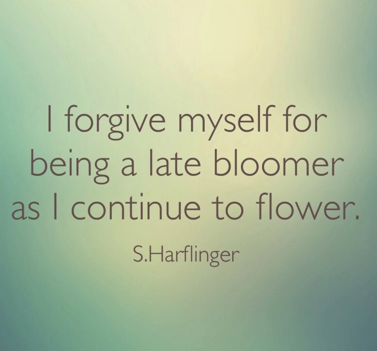 A flower of many seasons