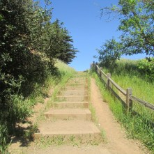 The beginning of the Corona Heights trail above Beaver Street