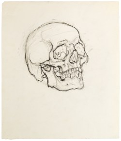 Payne-Skull drawing (first) (web)