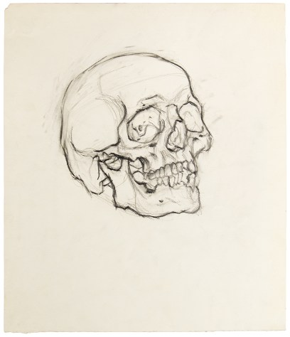Payne-Skull drawing (first) (web)