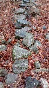 buried-stone-wall