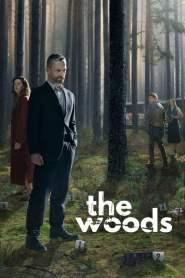 W głębi lasu: Season 1 online
