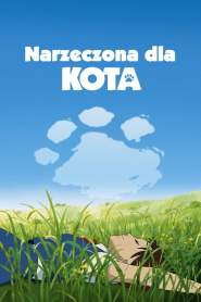 Narzeczona dla kota online cda pl