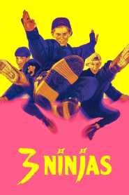 Trzech małolatów ninja cały film online pl