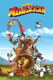 Zakochany Madagaskar online cda pl