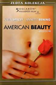 American Beauty online cda pl