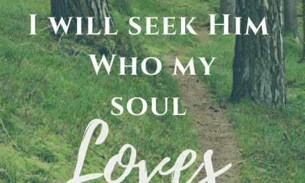 Seek the One You Love