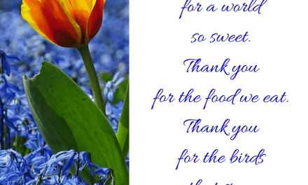 The Sweetest Thank You