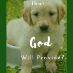 Do You Believe God Will Provide?