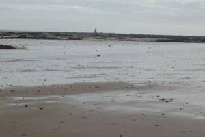 Sea bed ramblings