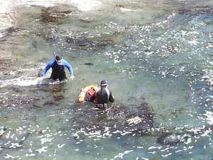 beach report, Sea Ranch, Heal the Bay, Sonoma