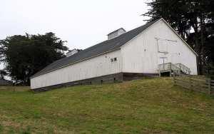 Knipp and Stengel Sea Ranch Barn, Christmas season , Sea Ranch, Abalone Bay, vacation, vacation rental, family , dog friendly,