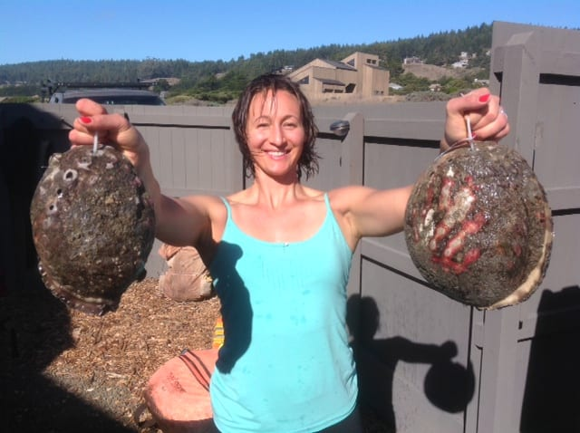trophy abalone diving, Abalone Divers, Sea Ranch, Abalone Season 2015, abalone