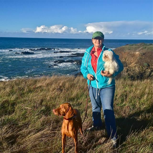 Sea Ranch homecoming, Sea Ranch Abalone Bay, dog friendly