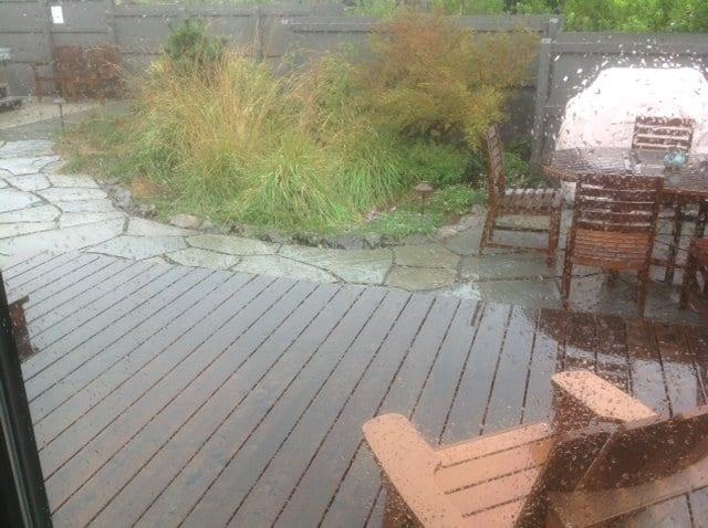 Sea Ranch Weather, rainy day