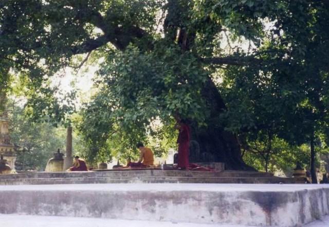 インド ブッダガヤ