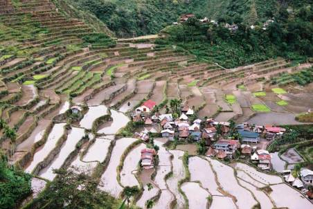 フィリピン、バナウェ。バタッド村の棚田【世界遺産】
