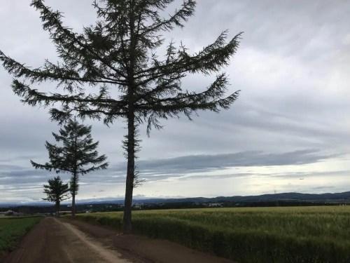 メルヘンの丘(女満別)、北海道