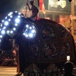 電飾の象が練り歩く!キャンディで見た「ペラヘラ祭り」【スリランカ】