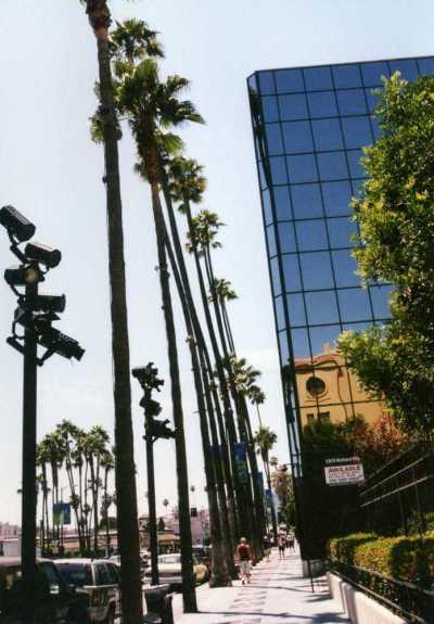 アメリカ、ロサンゼルス