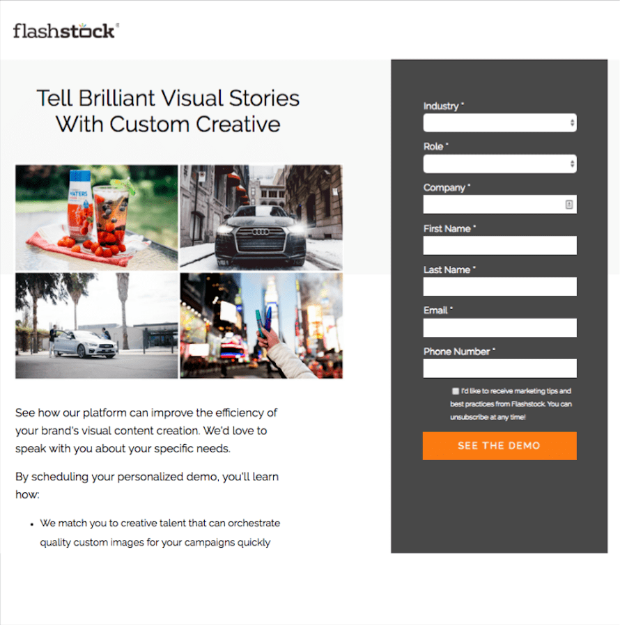 Flashstock Landing Page by Search & Gather