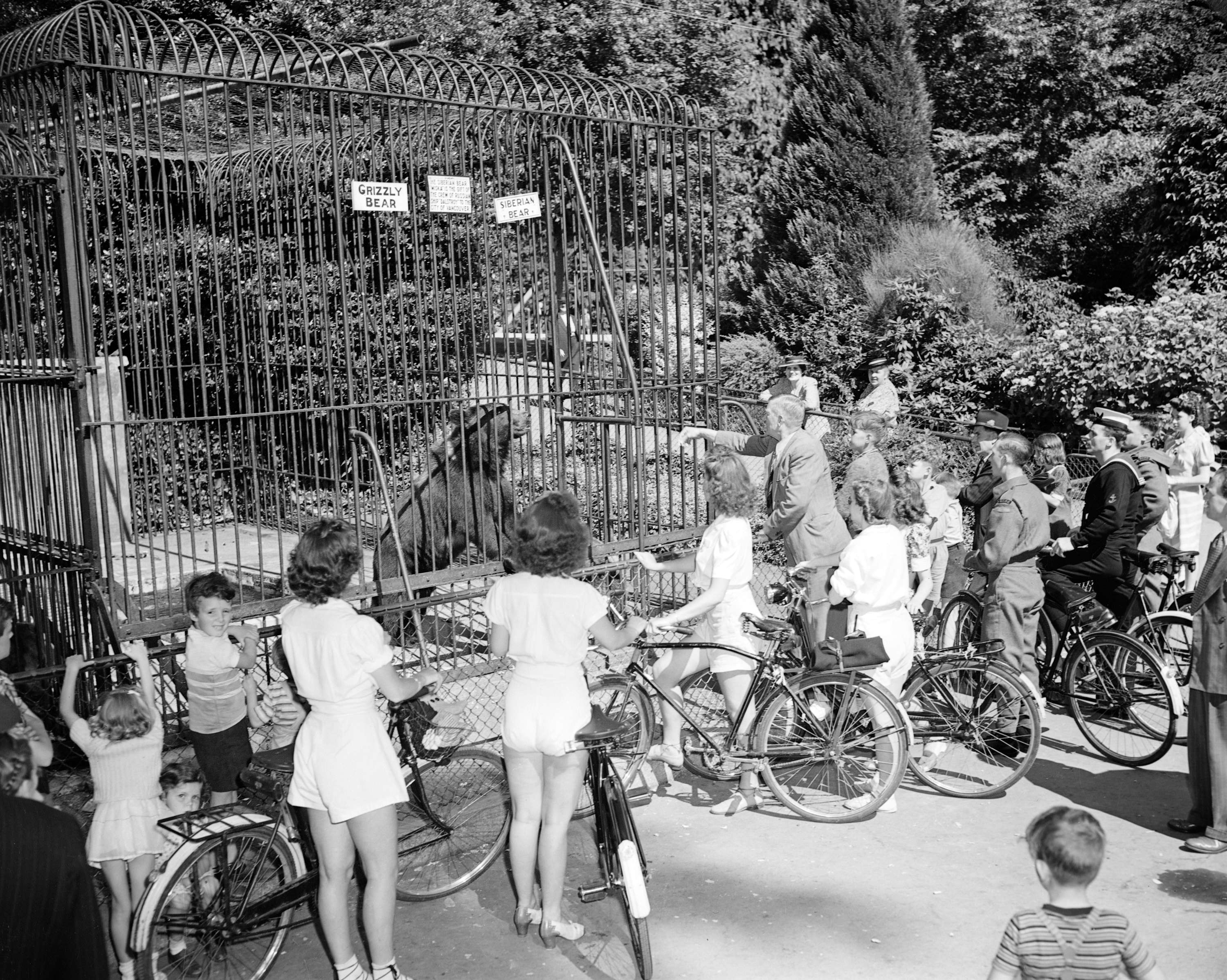 Canadian Youth Hostel bike hike [in front of the grizzly bear cage at the zoo, 1943. Photo: Vancouver Archives CVA 586-1337