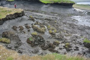 thawing coastal permafrost