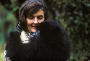 Dian Fossey pic