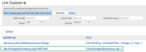 Bing Link Explorer